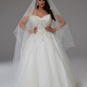 Wedding cathedral veils